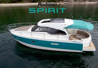 RODMAN_SPIRIT